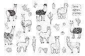 llama animal vector hand drawn illustrations set with cactus
