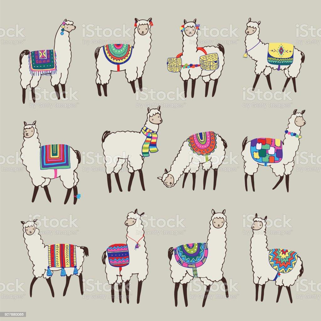 conjunto de ilustraciones de vector animal Lama - ilustración de arte vectorial