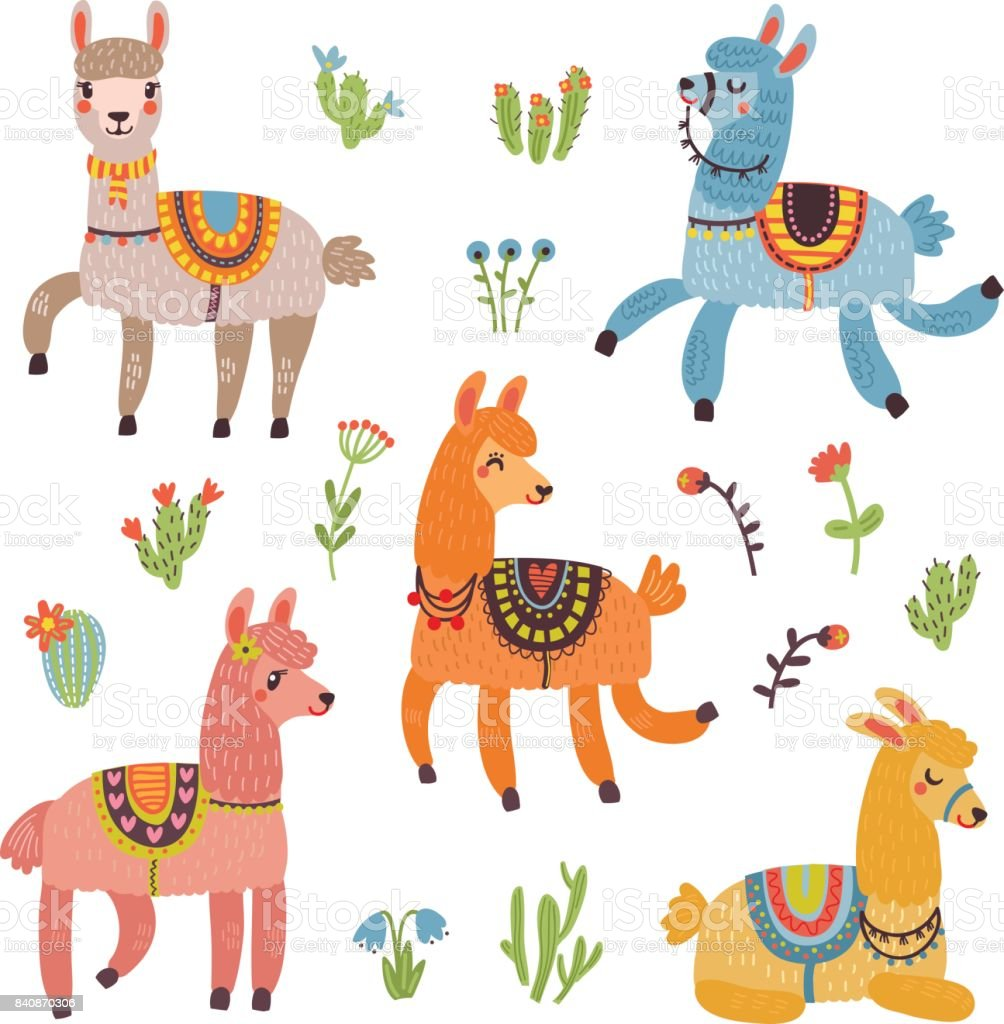 Lama vector card with characters vector art illustration