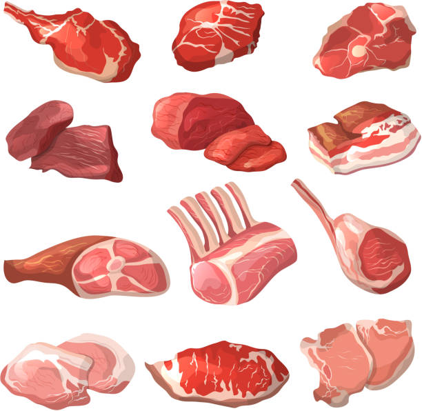 Lamb, pork beef, and other meat pictures in cartoon style vector art illustration