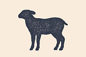 Lamb, sheep. Concept design of farm animals - Lamb or Sheep side view profile. Isolated black silhouette lamb or sheep on white background. Vintage retro print, poster, icon. Vector Illustration