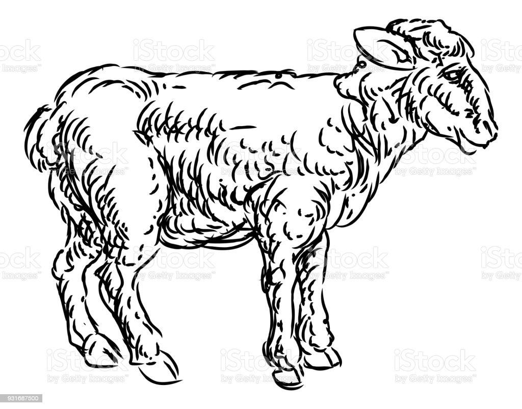 Lamb Sheep Food Grunge Style Hand Drawn Icon vector art illustration