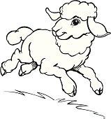 An a vector illustration of lamb.