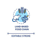 Land based food chain concept icon. Energy producer and consumers. plant, herbivores and carnivores. Ecosystem idea thin line illustration. Vector isolated outline RGB color drawing. Editable stroke