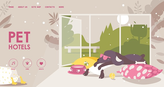Landing page for pet hotel. Happy dog in sunglasses lies on a pillow. Interior scene about love and care to animals