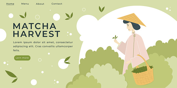 Landing page with Matcha attributes Vector Illustration.