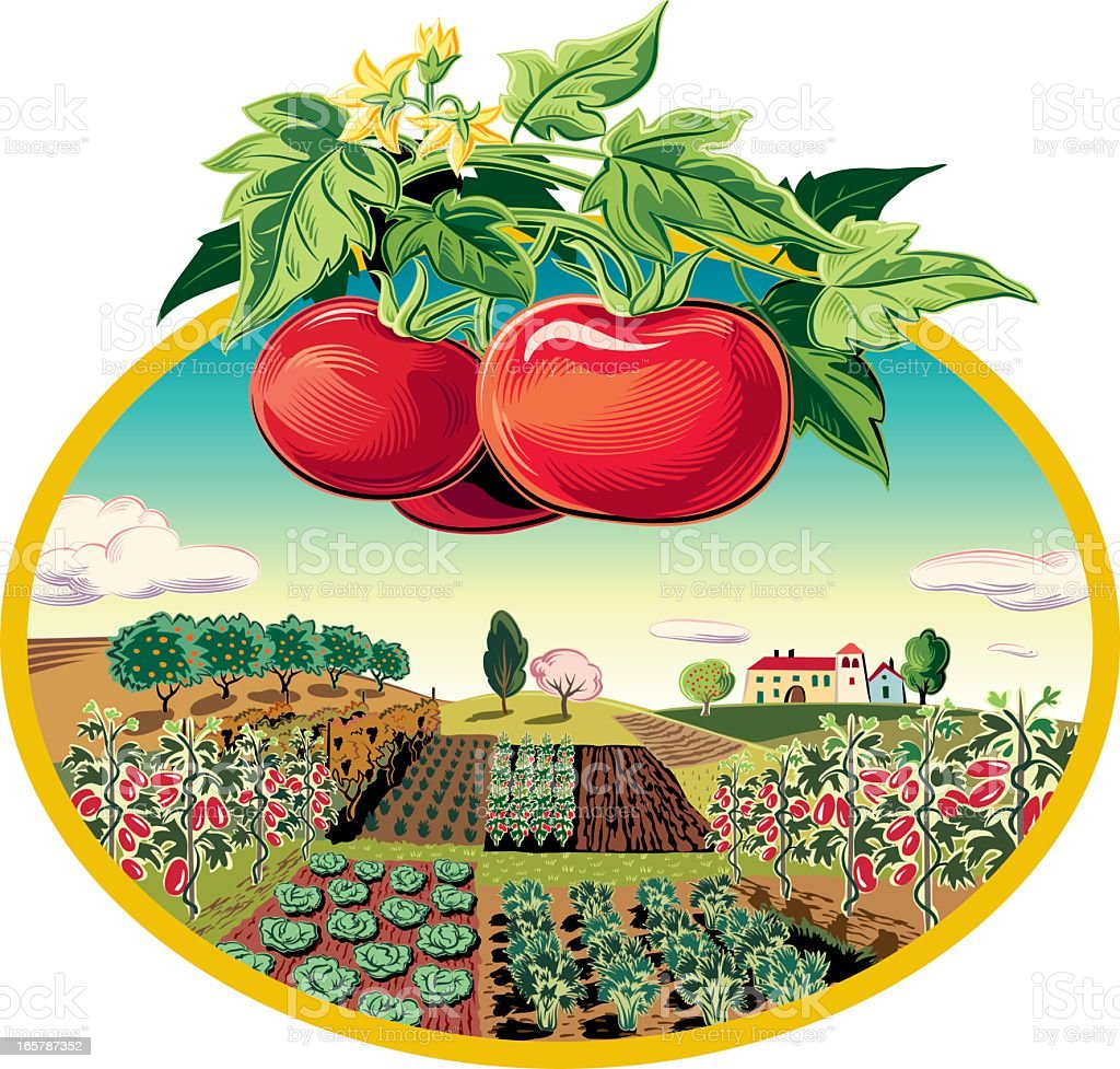 landscape in oval frame and tomatoes vector art illustration