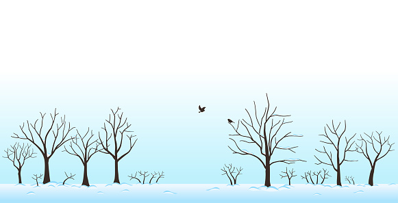 Landscape of trees covered with snow and birds in winter
