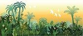 Landscape of Tropical Lush Jungle in Golden Light