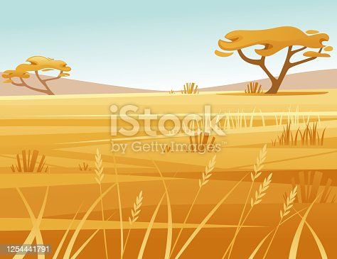 istock Landscape savanna background with clear sky yellow grass and tree flat vector illustration cartoon style 1254441791