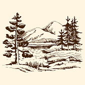 Hand drawn landscape vector sketch. Pine near the lake in the foreground. at the back of the fir trees against the background of the mountains.