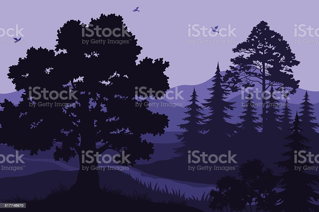 Landscape, Trees, Mountains and Birds vector art illustration