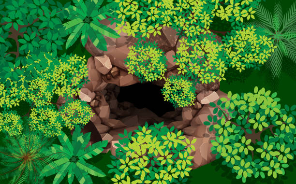 landscape top view stone cave in the forest cliffs stock illustrations