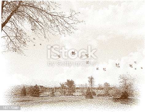 Etching illustration of landscape with lake and flock of birds. Soft dreamy quality. All elements grouped separately and on separate layers for easy editing. Lots of great cropping options in this file. Has a