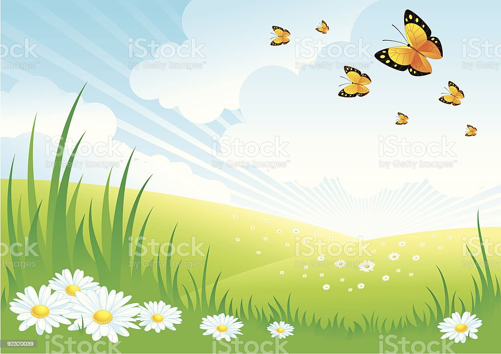 Landscape with Daisies royalty-free stock vector art