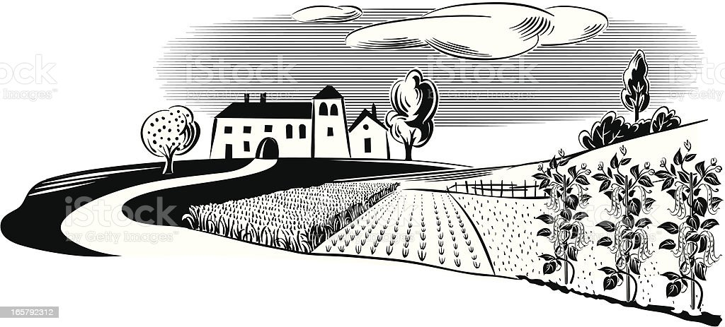 landscape with farm royalty-free landscape with farm stock vector art & more images of agriculture