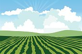 Landscape with green field. Vector illustration