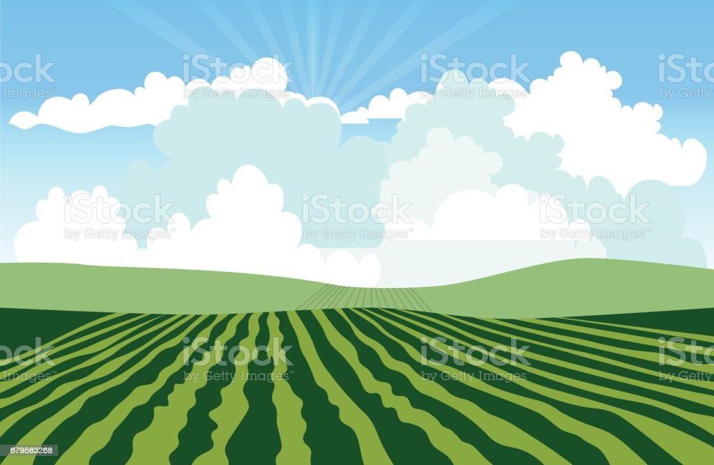 Landscape with green field vector art illustration