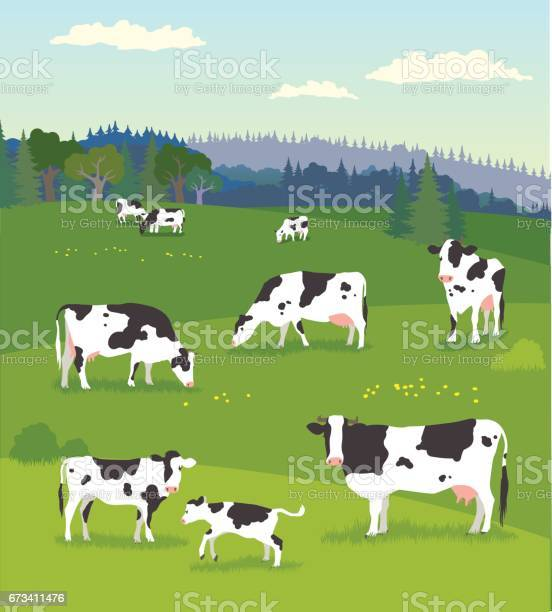 Landscape with pasturing cows with baby cows vector id673411476?b=1&k=6&m=673411476&s=612x612&h=qmbbol6w7knv8q8ft6t80gk88bwincrydwbzbhr8ipm=