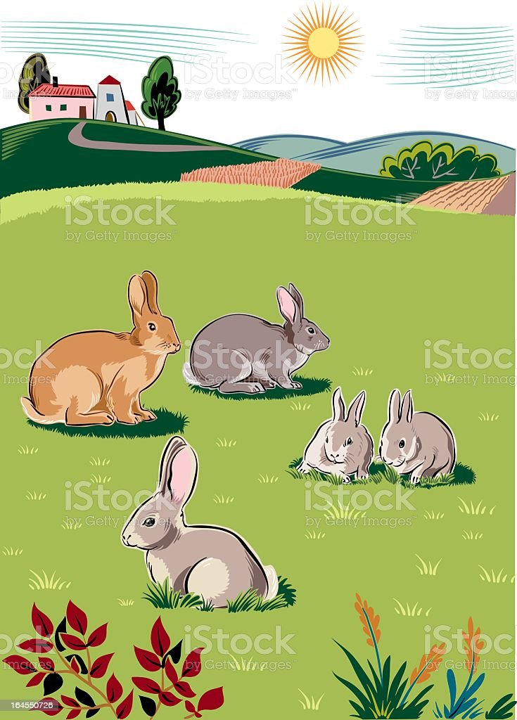 landscape with rabbits royalty-free landscape with rabbits stock vector art & more images of agriculture
