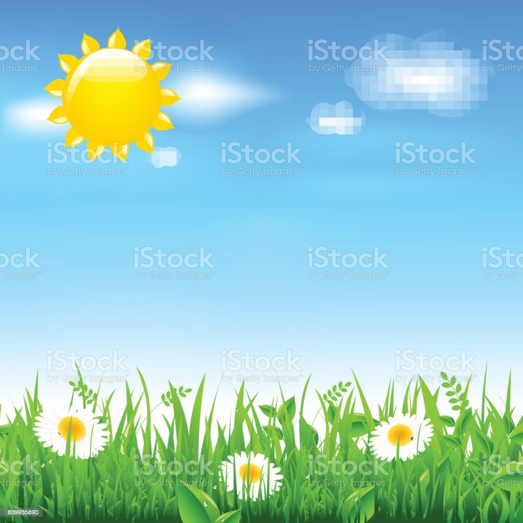Landscape With Sun And Camomiles, With Gradient Mesh, Vector...
