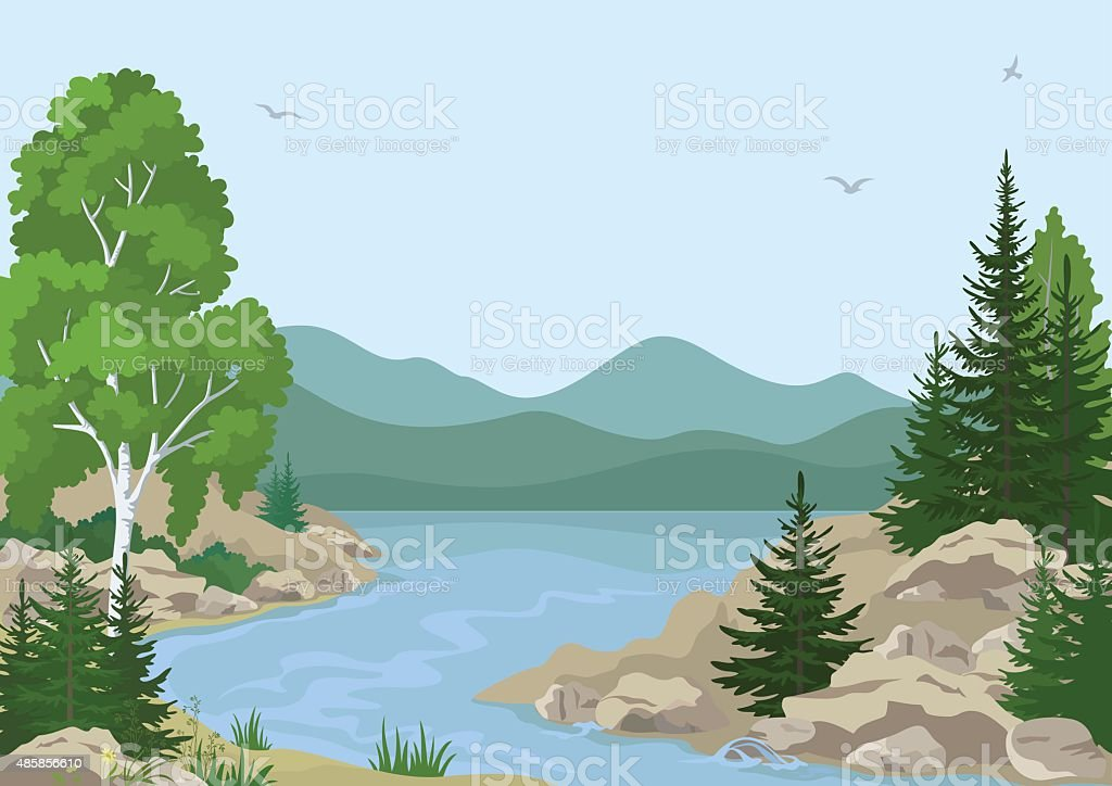 Landscape with Birch, Fir Trees and Grass on the Rocky Bank of a...