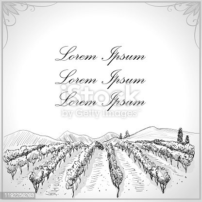 Landscape with vineyard graphic illustration, empty space for text