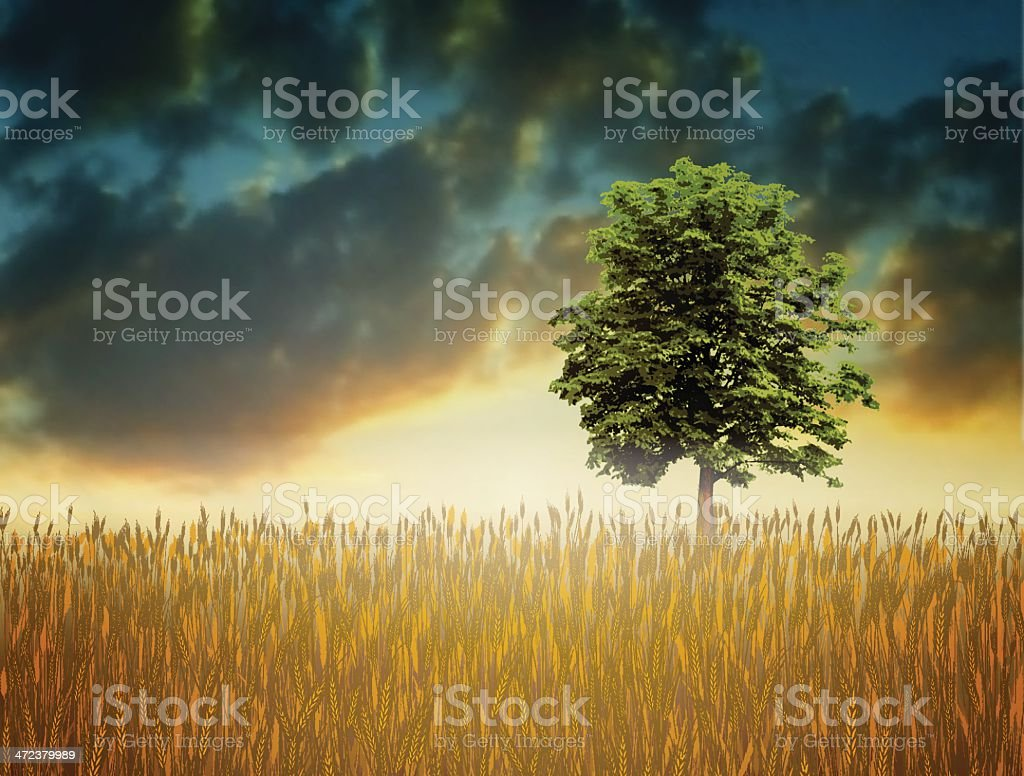 Landscape with wheat field royalty-free stock vector art