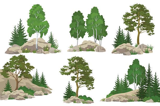 bildbanksillustrationer, clip art samt tecknat material och ikoner med landscapes with trees and rocks - wood stone