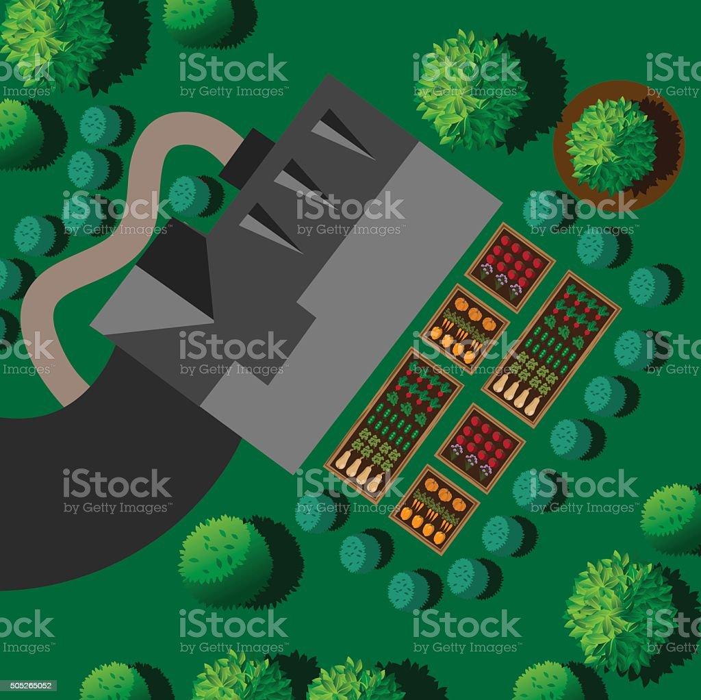 Landscaping with house and kitchen vegetable garden vector art illustration