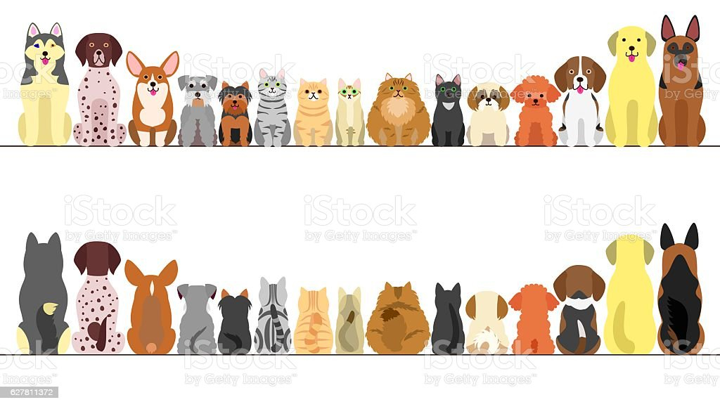 large and small dogs and cats banner set, front view and rear view vector art illustration