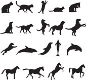 Collection of 19 animal silhouettes including cats, dogs, dolphins, and horses.