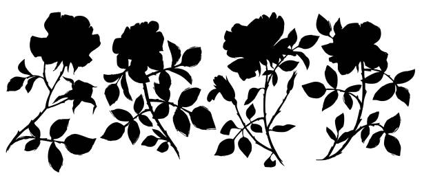 Large black ink tattoo roses silhouettes collection. floral set isolated on white. Large black ink tattoo roses silhouettes collection. Sketch black shadow flat single flowers for prints, card, poster, banner, icons. anniversary clipart stock illustrations