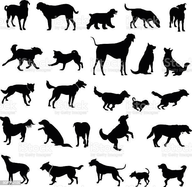 Large collection of dog silhouettes vector id508580100?b=1&k=6&m=508580100&s=612x612&h=lzwmrqercqglvmsoswi1y8fahky3vezp26bqebhsyqe=