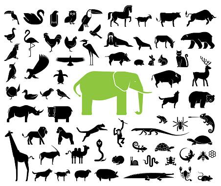 Large collection of geometrically stylized land animal icons.
