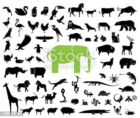 Pictogram icons representing mammals.