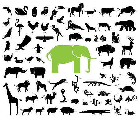 Large collection of geometrically stylized land animal icons. clipart