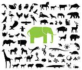 幾何学的様式化された土地の動物アイコンの大コレクション。