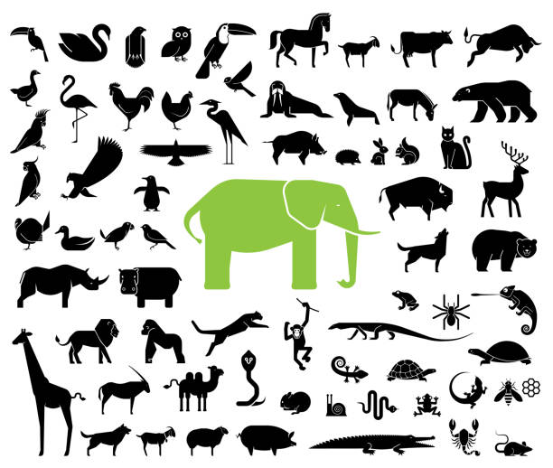 large collection of geometrically stylized land animal icons. - animals stock illustrations