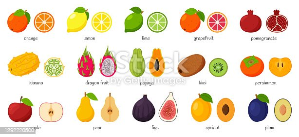 Large collection of tropical, exotic, citrus fruits with names. Set of cutaway fruits. Pairs of fruit, whole and cut in half. Flat vector illustration. Design elements isolated on a white background.
