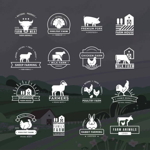 stockillustraties, clipart, cartoons en iconen met een grote verzameling vector logo's voor boeren, supermarkten en andere industrieën - poultry farm