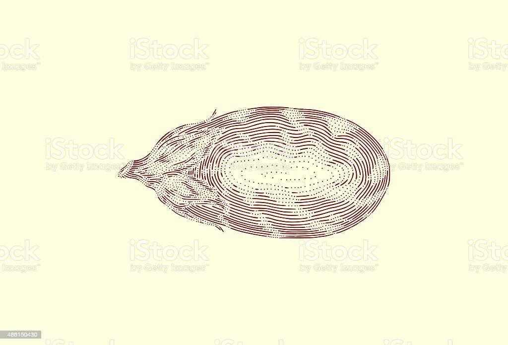 Large Eggplant vector art illustration