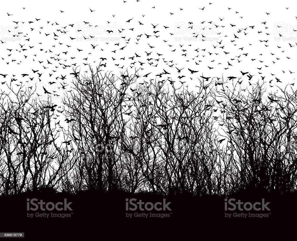 Large flock of birds vector art illustration