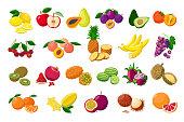 Large fruit collection detailed vector illustrations isolated on white background. Juicy pitaya, durian, carambola, kiwano, rambutan, cucamelon, pomelo, fingered citron, passion fruit, peaches, lemon