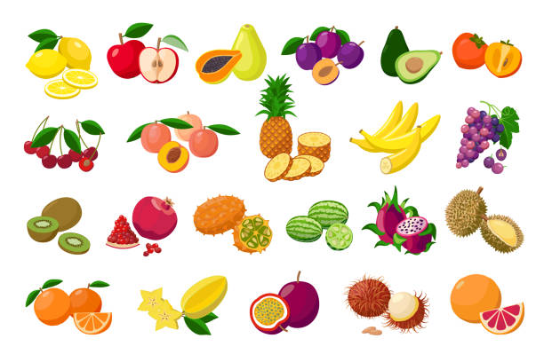 ilustrações de stock, clip art, desenhos animados e ícones de large fruit collection detailed vector illustrations isolated on white background. juicy pitaya, durian, carambola, kiwano, rambutan, cucamelon, pomelo, fingered citron, passion fruit, peaches, lemon. - diospiro