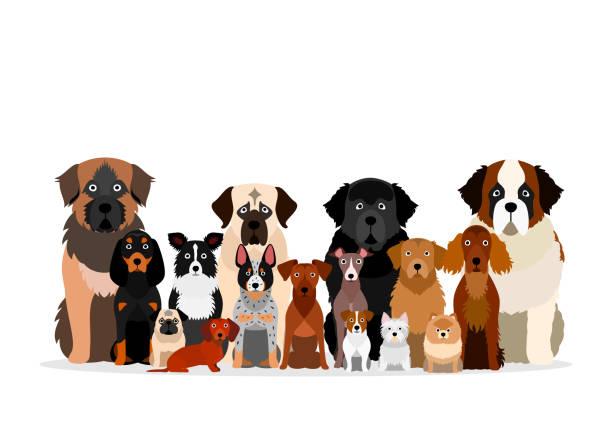 様々な品種の犬の大きなグループ ベクターアートイラスト