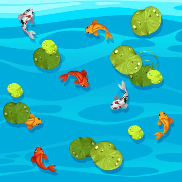 große koi fische im teich - seerosenteich stock-grafiken, -clipart, -cartoons und -symbole