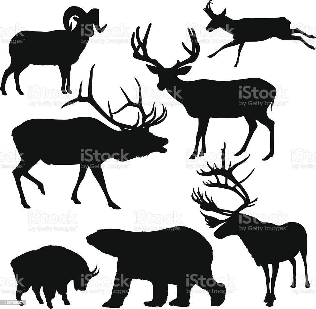 Large Mammal Silhouettes vector art illustration