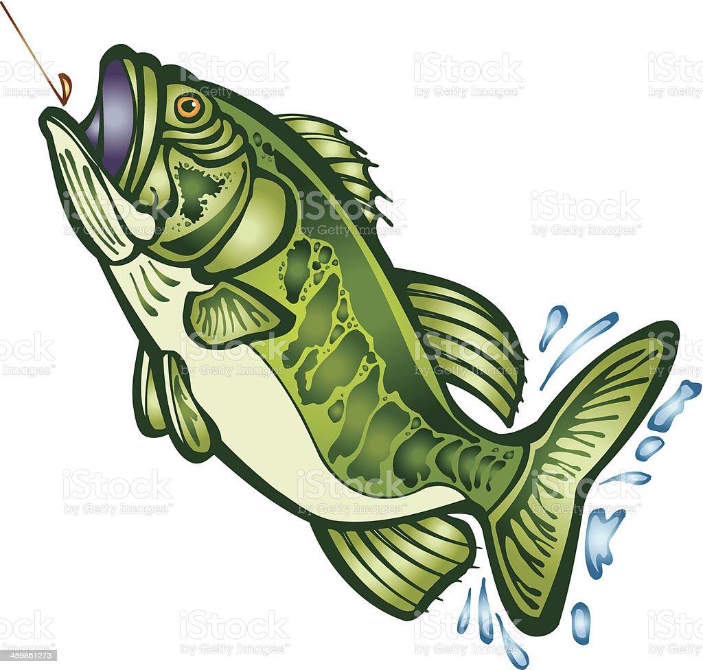 royalty free largemouth bass clip art vector images illustrations rh istockphoto com Largemouth Bass Logo largemouth bass clip art free