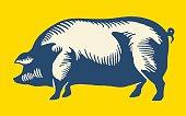 istock Large Pig 480235288